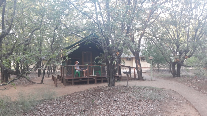 Luxury tent with verandah at Letabah
