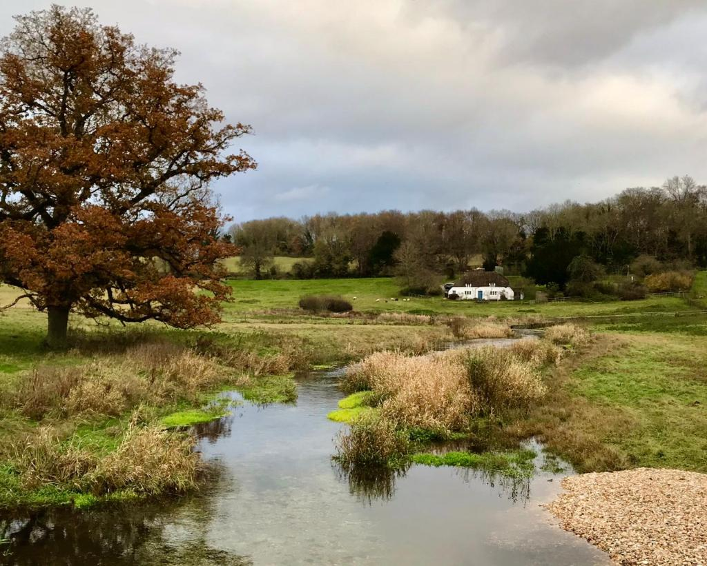 marshy valley with traditional cottage in the distance